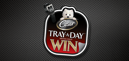 cesars tray a day contest