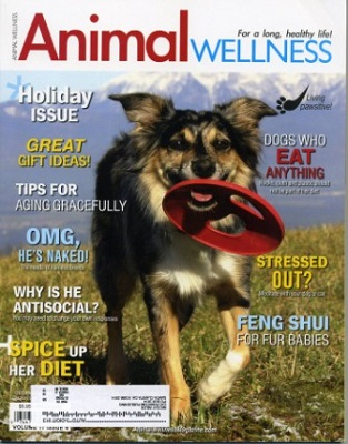 AnimalWellnesscoverenergyreview1