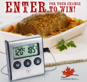 free-programmable-thermometers-giveaway