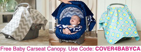 FREE Baby Carseat Canopy 49 Value Just Pay Shipping