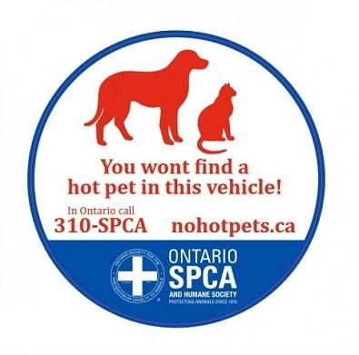 no hot pet sticker