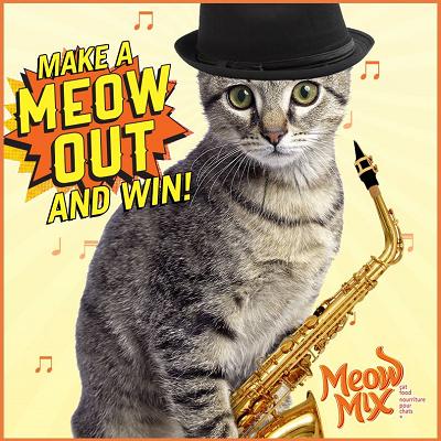 Get meow coupons