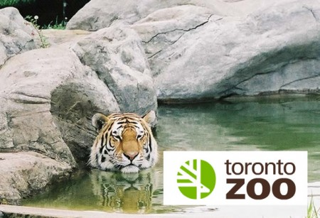 toronto-zoo-33-13492680641