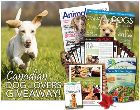 canadian dog lovers giveaway