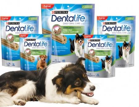 dentalife chews