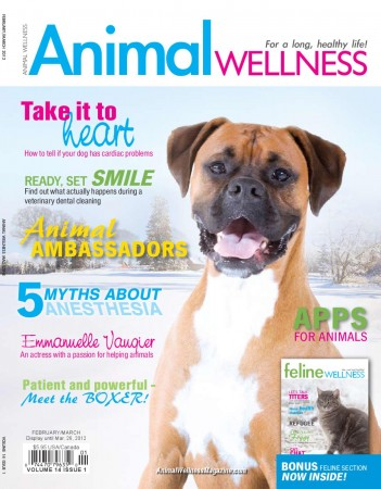 animal wellnes magazine