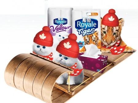 royale bundle up contest
